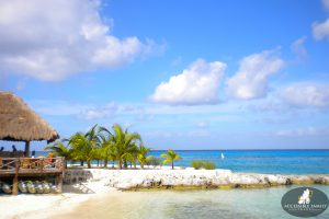 Image Description: White sandy beach with a tekki bar over looks the beach in Cozumel, Mexico. There is a small jetty of rocks with palm trees behind it.